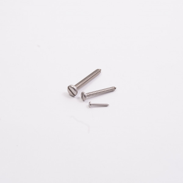 Self Tapping Pan Head Slotted Screw A4