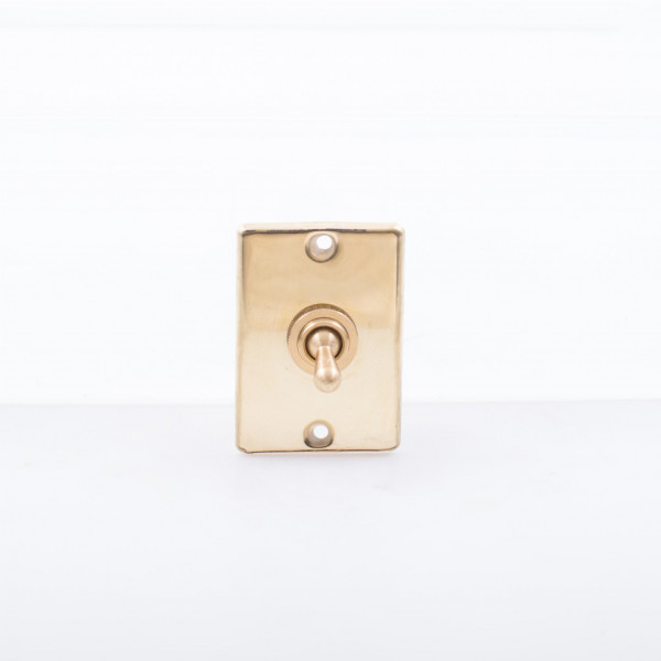 Davey and Co. Switch with Plate Brass