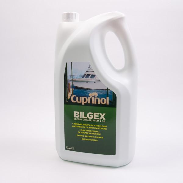 Bilgex